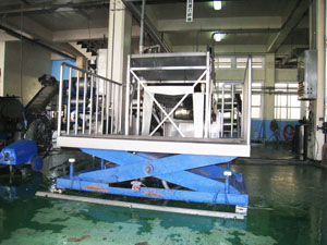 Guavas cleaning equipment